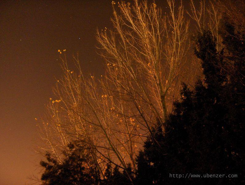 Ege Kampus Gece