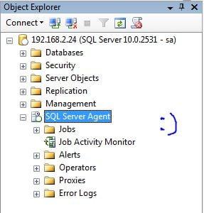sql server adim 12